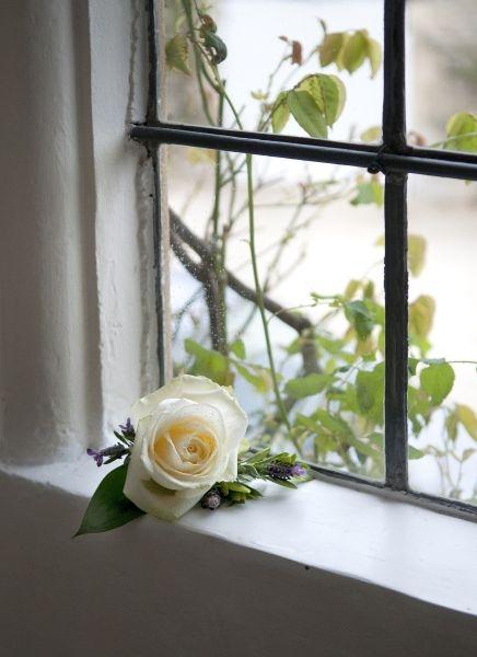 Buttonhole-white-rose