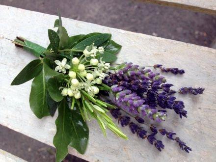 Lavender-buttonhole