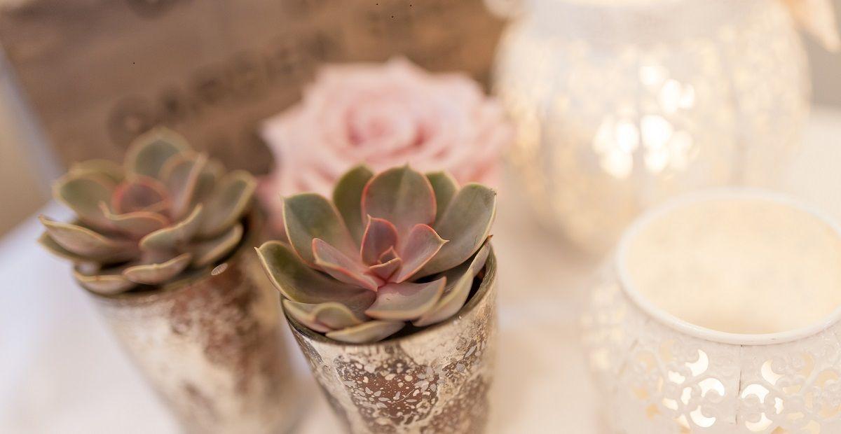 wedding flowers succulents