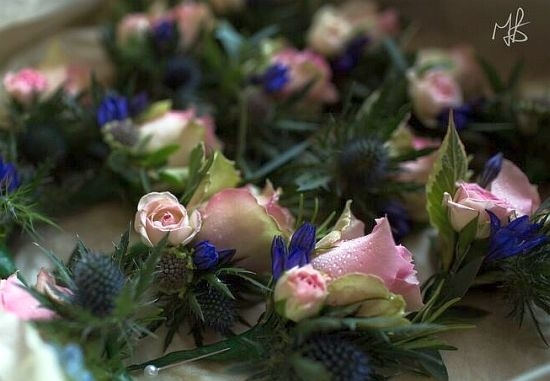 Pink rose & thistle buttonhole