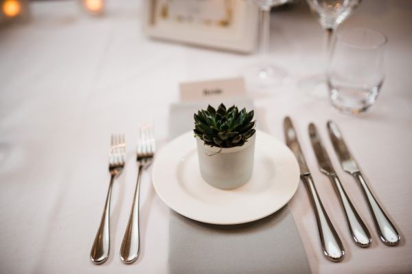 Succulent wedding table favours