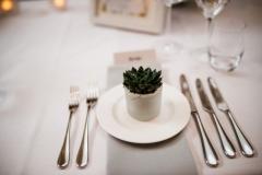 Succulent wedding table favours